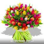 В Минске к 8 марта продажу живых цветов обещают организовать на 446 дополнительных площадках