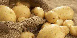 Польская картошка в Беларуси