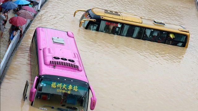 автобусы на затопленной улице