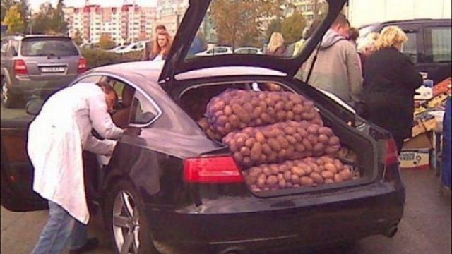 Торговля картофелем с машины