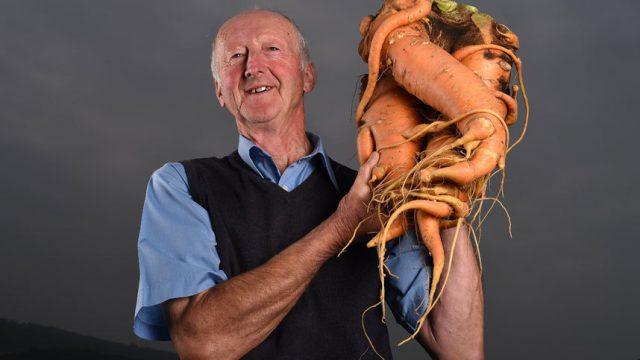 человек с гигантской морковью