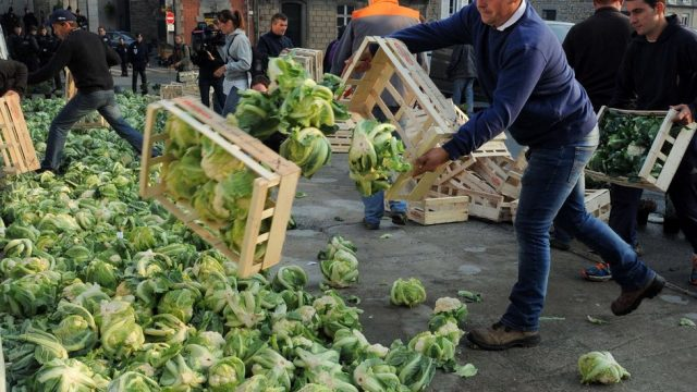 фермеры высыпают капусту