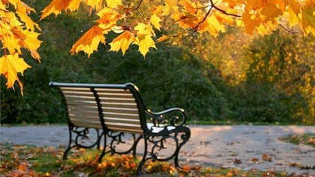 Скамейка осенью