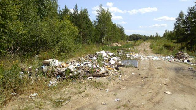 Вывоз мусора в леса