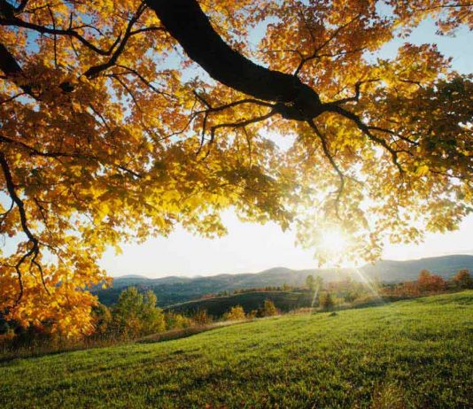 Осень в Беларуси