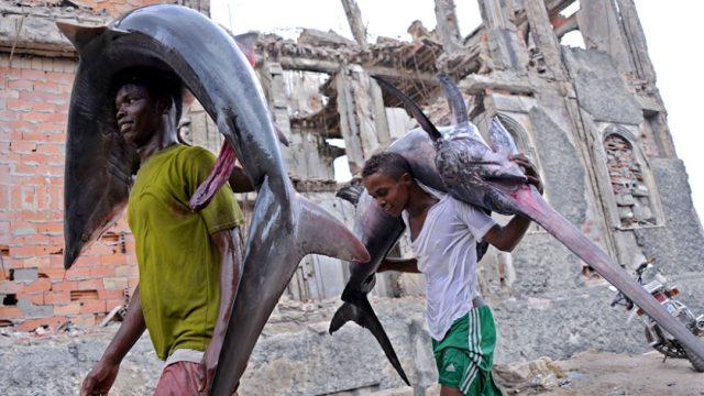 носильщики с акулами на спине