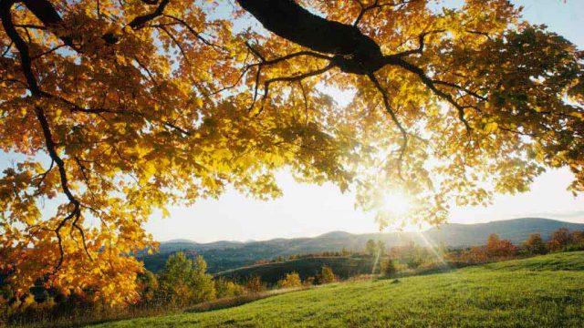 Теплая осень в Беларуси
