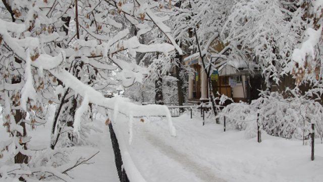 Снег в Беларуси