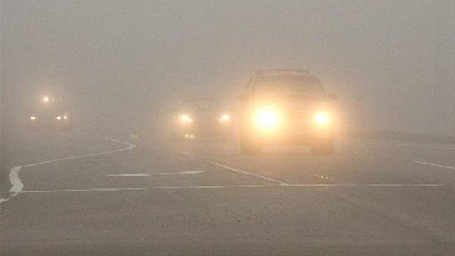 туман-на-дороге