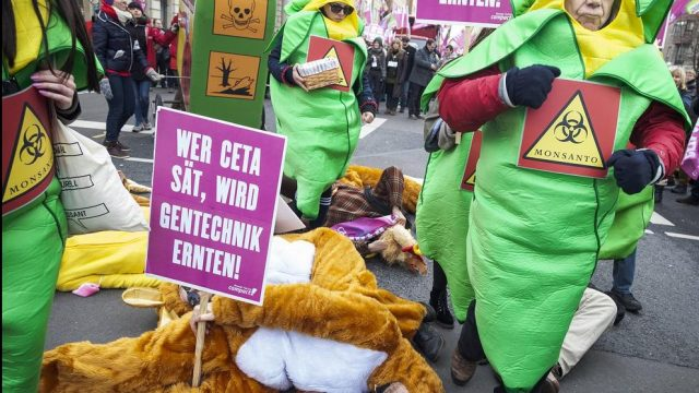 акция протеста на Зелёной неделе