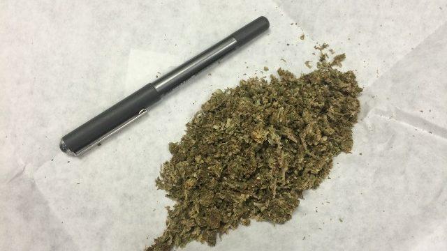 В машине у витебчанина обнаружили марихуану