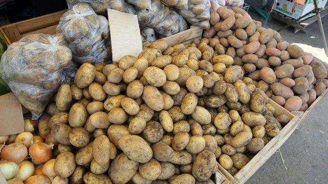 В Минске прошлогодний картофель будет стоить не дороже  Br6,3 тыс.
