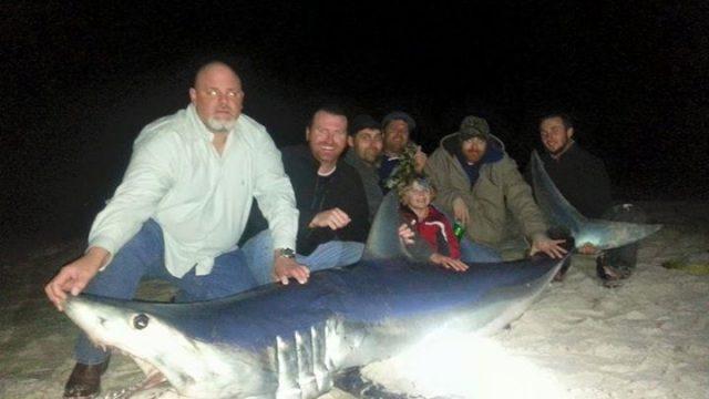 Рыбак из штата Флорида поймал акулу весом более четверть тонны