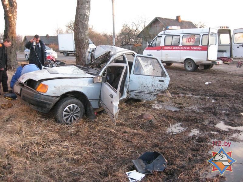 ДТП в Быховском районе- автомобиль столкнулся с деревом
