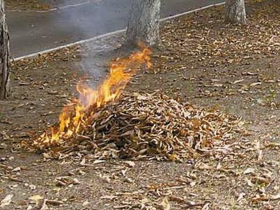 В Могилеве под горящими листьями погиб мужчина
