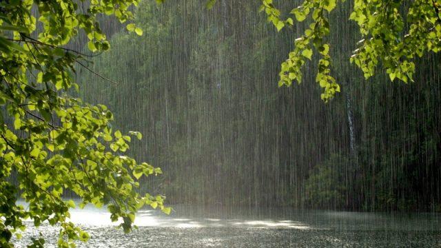 В выходные белорусов ждет плохая погода - дожди порывистый ветер и заморозки
