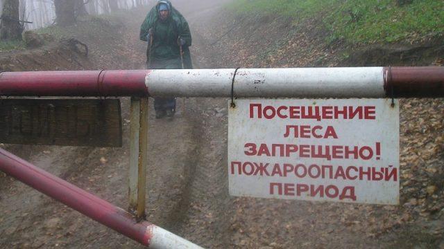 запрещено посещать лес