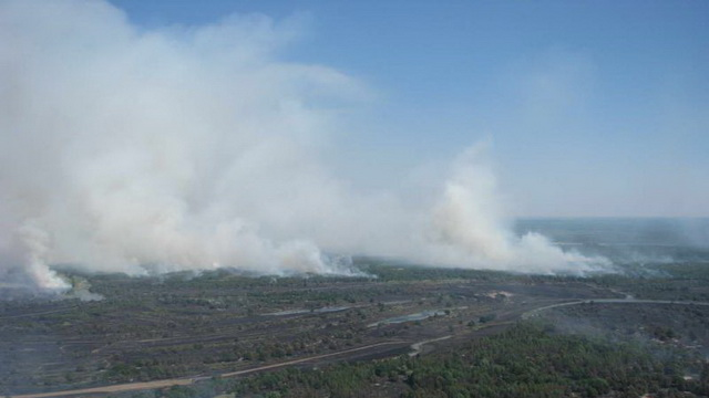 На Гомельщине горят леса, крайне сложная пожароопасная ситуация
