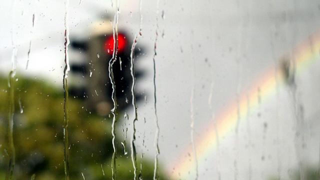 Неделя начнётся с прохладной и дождливой погоды
