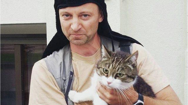 Кот на выборы