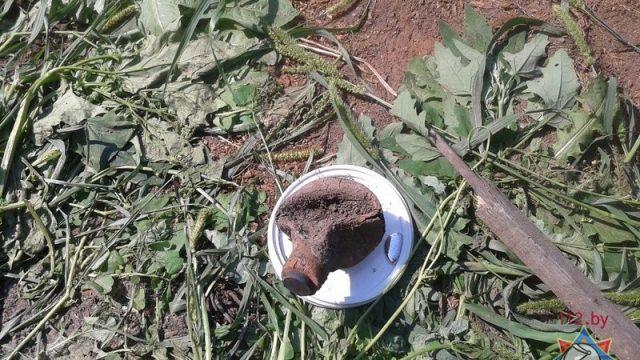 В Гомельском районе нашли емкость с 1 кг ртути