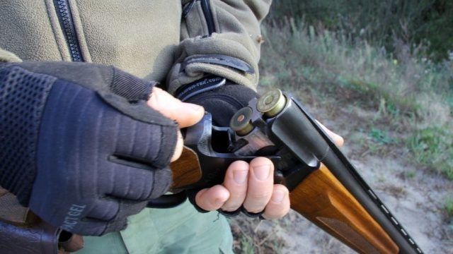 В Витебской области разыскивают убийцу егеря