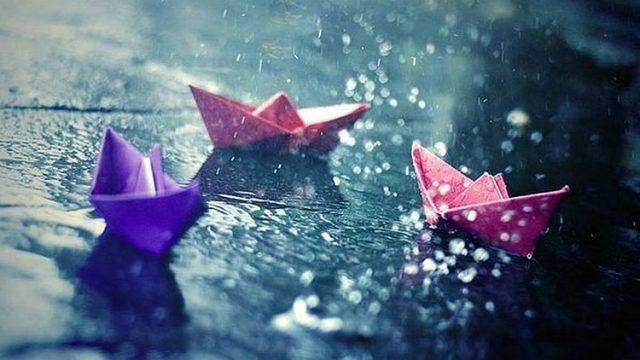 Дожди и грозы ожидаются в Беларуси 20 июня