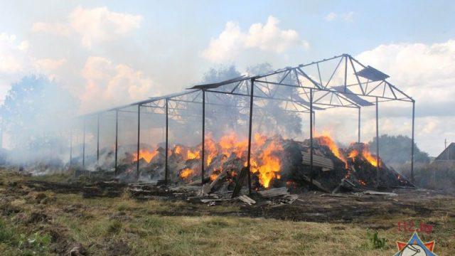 Детская шалость послужила причиной пожара в Кобринском районе