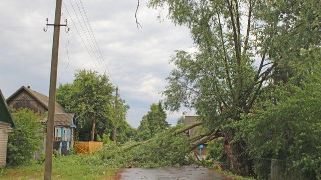 В результате сильного ветра были обесточены 756 населённых пункта