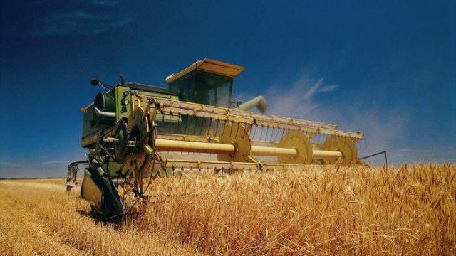 В Витебской области начали уборку зерновых