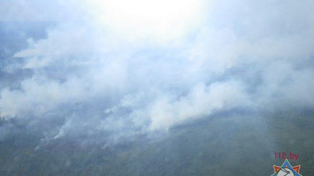 270 человек тушат пожар в Осиповичском районе