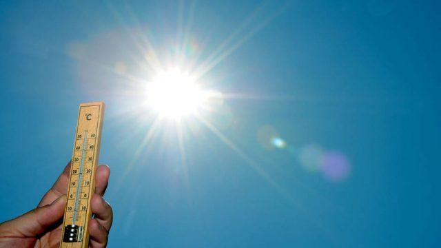 В первые дни сентября в Беларуси будет жарко