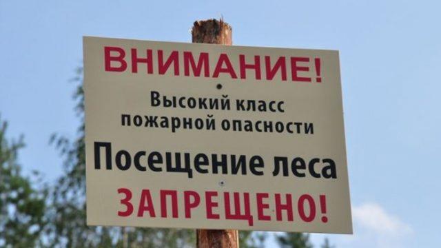 Во всех районах Беларуси введен запрет на посещение лесов