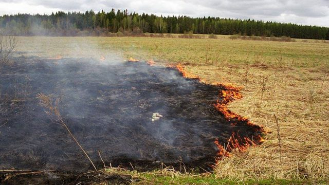 В Шумилинском районе от огня пострадал пенсионер, поджёгший мусор