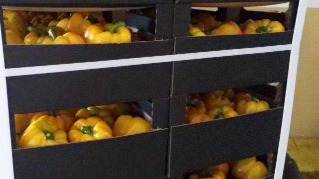 Витебские таможенники пресекли ввоз из ЕС крупной партии нелегальных овощей и фруктов