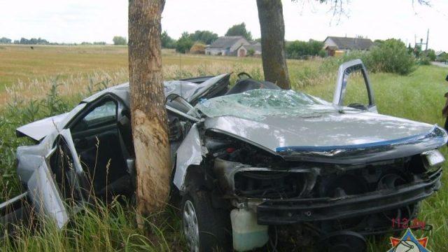 """В Дрогичинском районе водитель """"Пежо"""" врезался в дерево"""