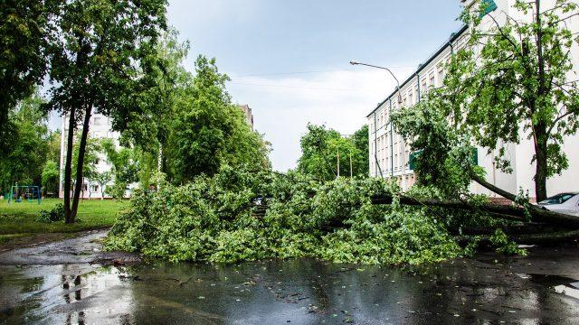 На 24 августа объявлено штормовое предупреждение