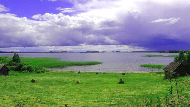 Покуратура: В Витебской области исполкомы недостаточно контролируют использование земель