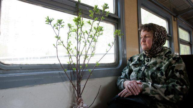 Пенсионеры в поездах