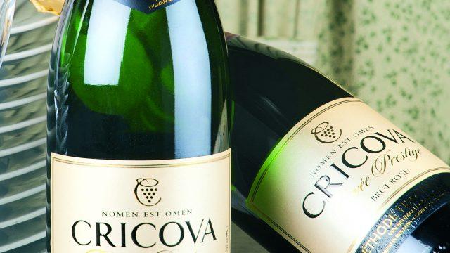 Беларусь с Молдовой начнут производить шампанское