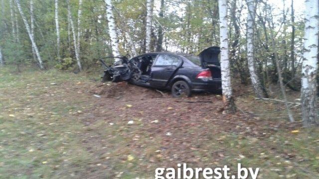 В Каменецком районе водитель врезался в дерево, понадобилась помощь МЧС