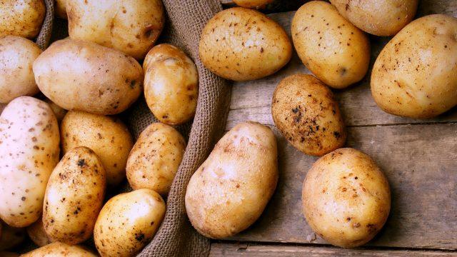 Россия запретила ввоз 20 тонн белорусской картошки