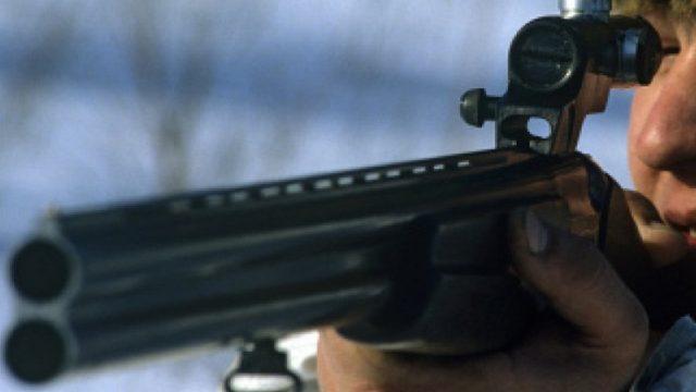 В Могилевской области задержаны браконьеры, убившие двух лосей