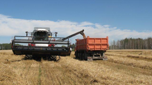 Минсельхозпрод: Убыточные сельхозпредприятия будут ликвидированы в течение 5 лет