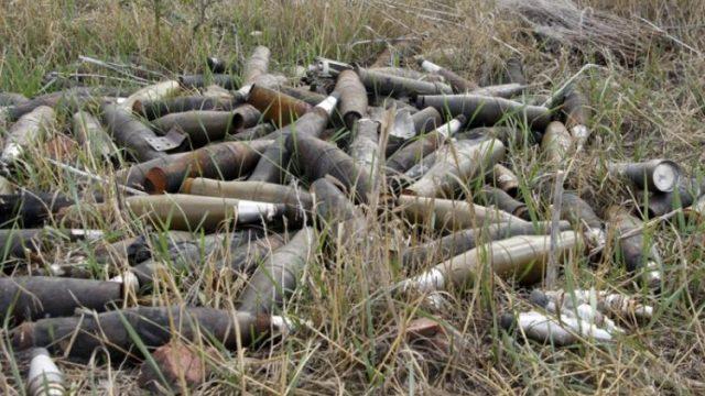 В Сенницком районе мужчина во время сбора грибов обнаружил склад боеприпасов времён ВОВ