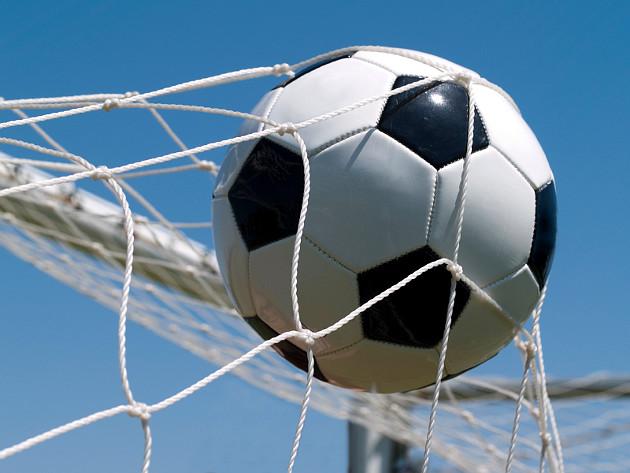 мяч в воротах