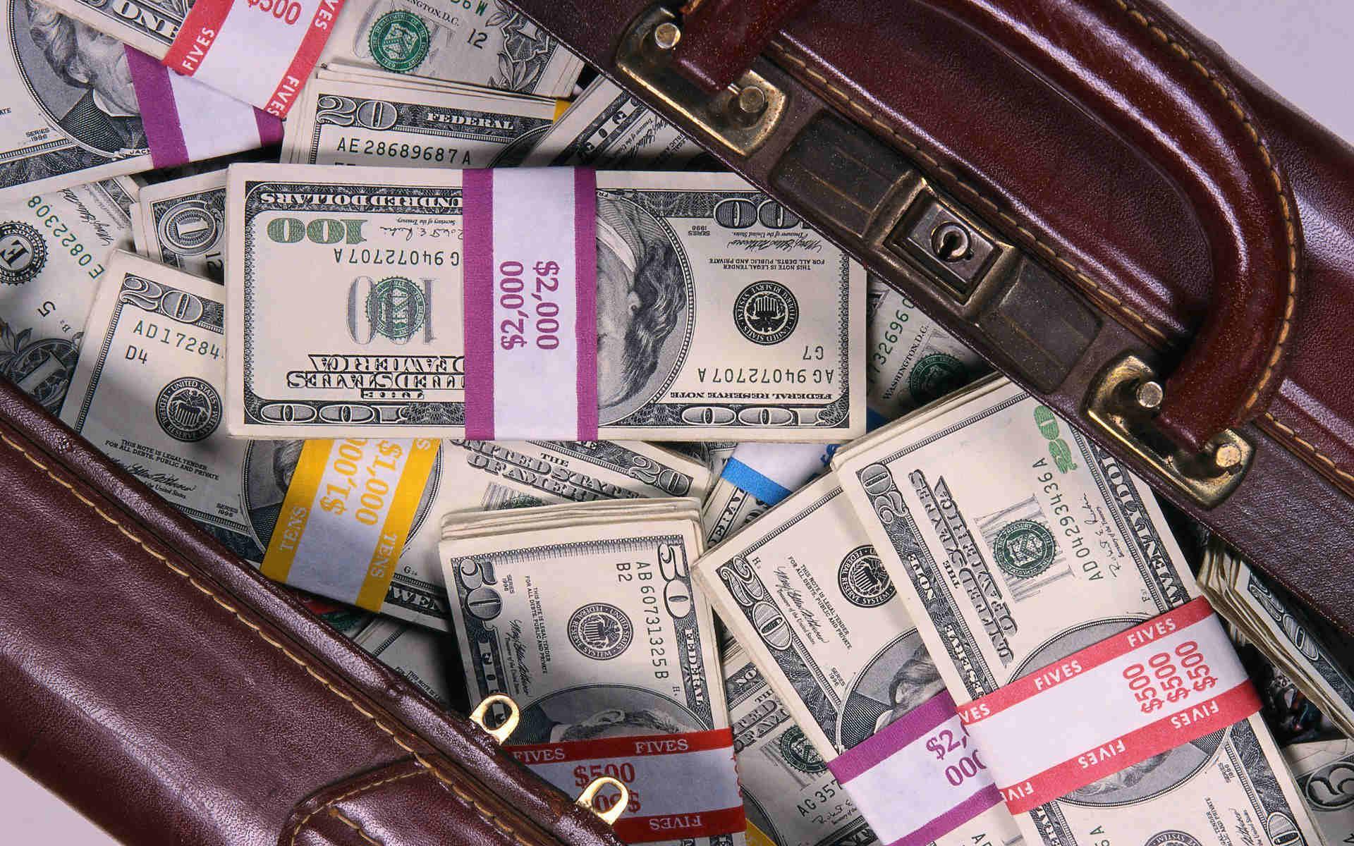 как печь фото сумки с долларами цветет сансевьера можно