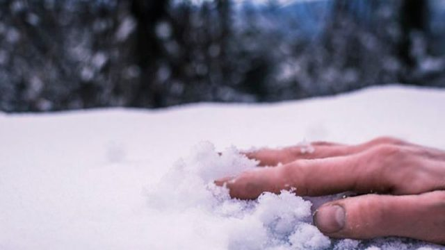 Замерзший в поле
