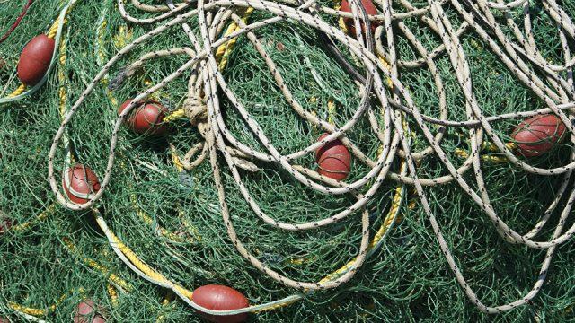 Лов рыбы