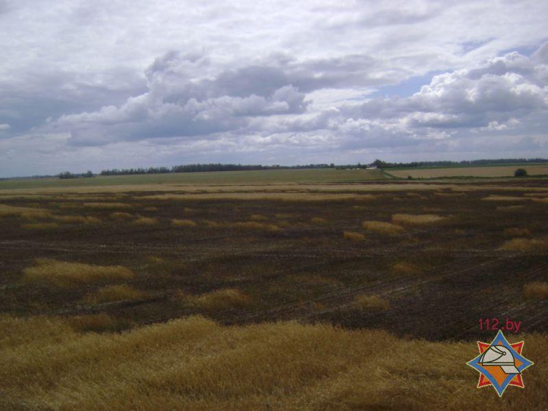 горело поле